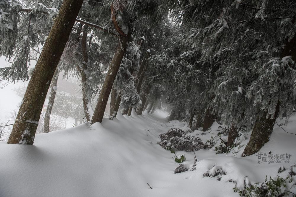 lalamountain-snow-161
