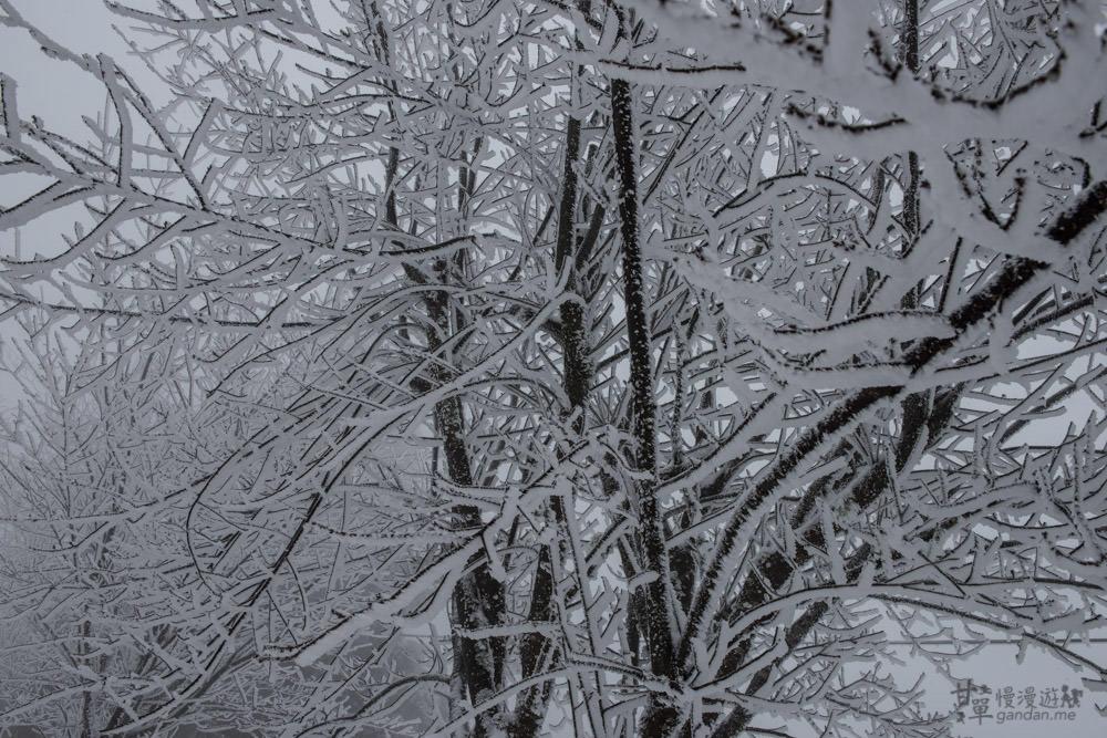 lalamountain-snow-188