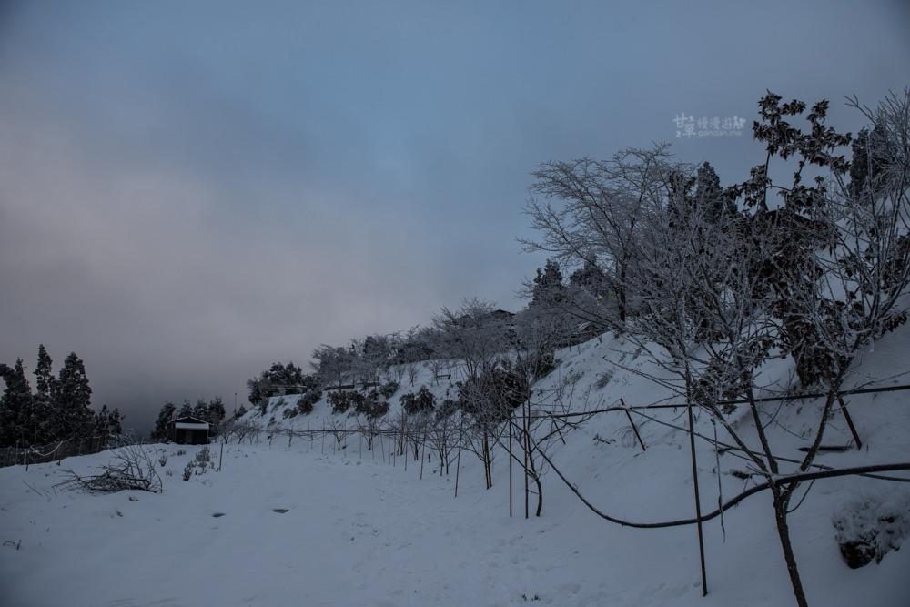 lalamountain-snow-232