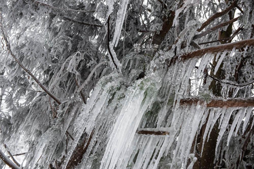 lalamountain-snow-243