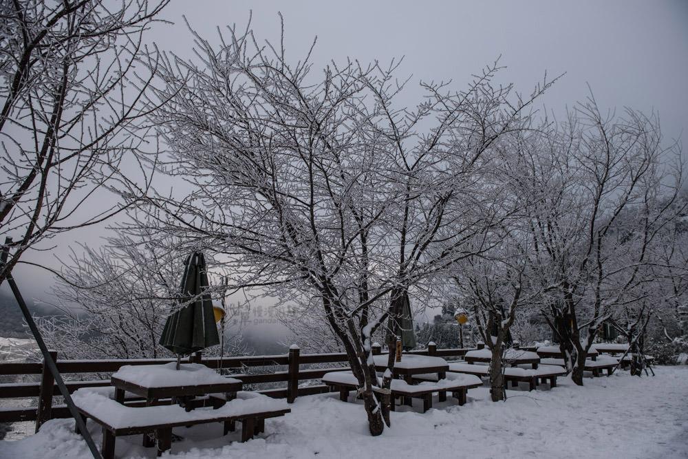 lalamountain-snow-248