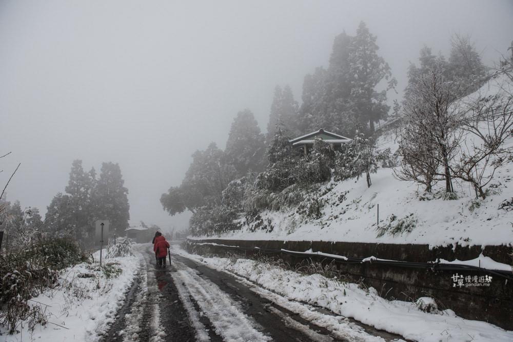 lalamountain-snow-338