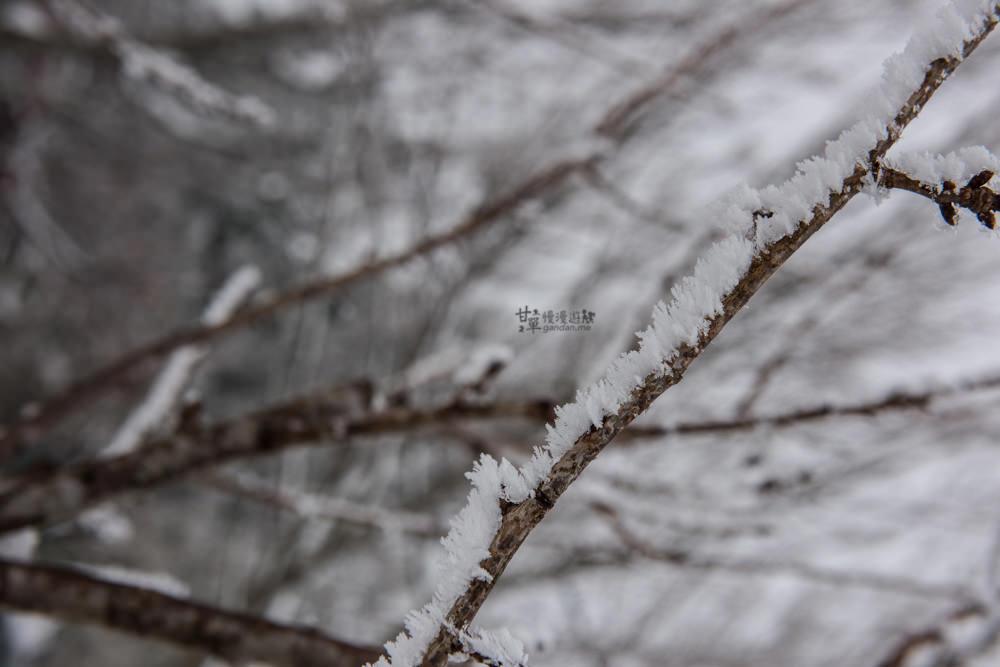 lalamountain-snow-356