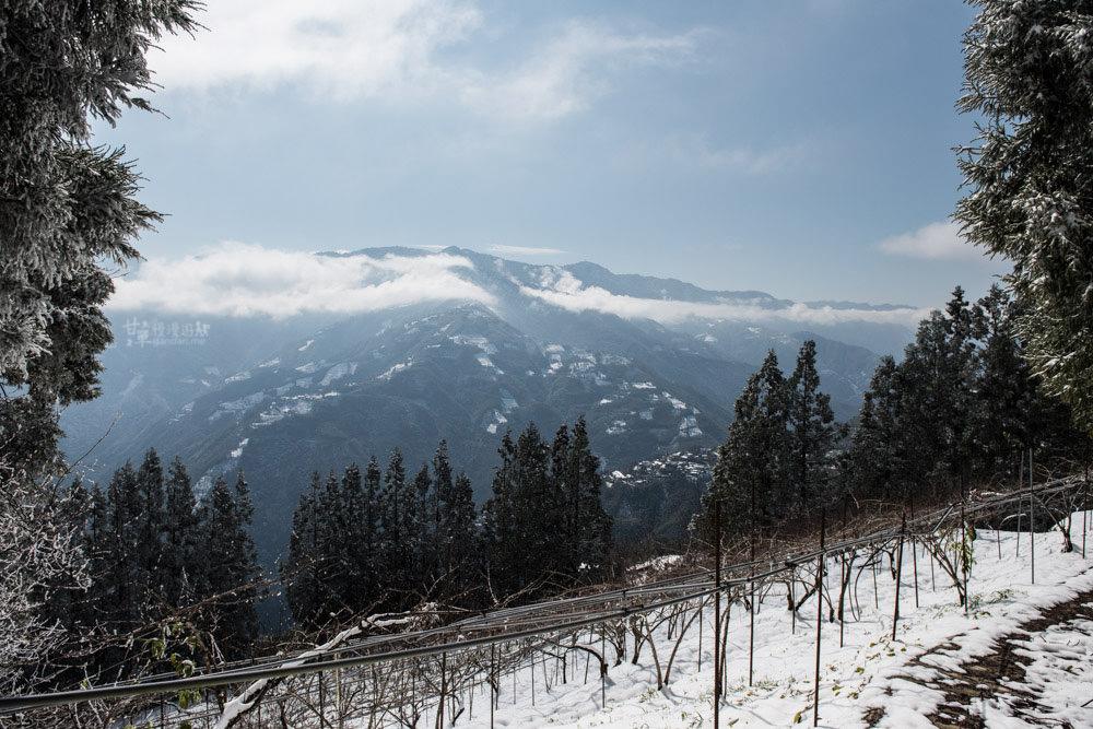 lalamountain-snow-385