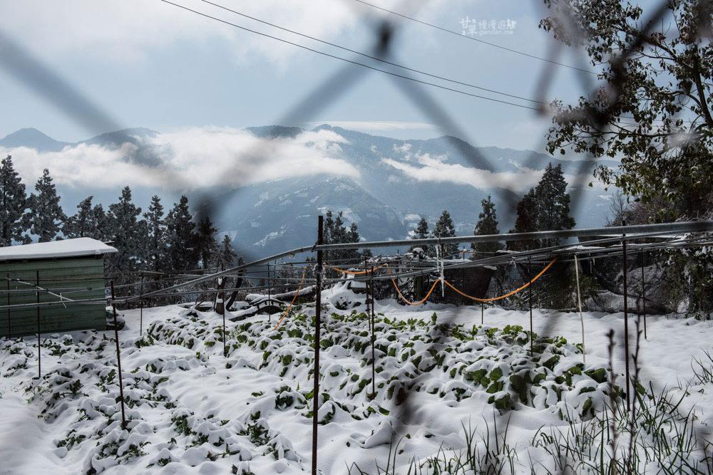 lalamountain-snow-389