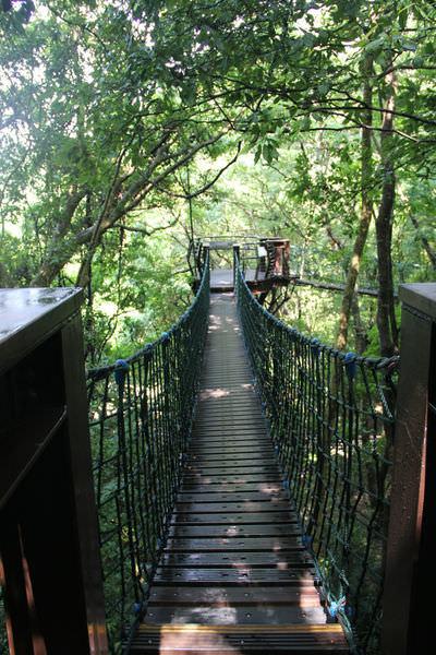 生態步道32.jpg