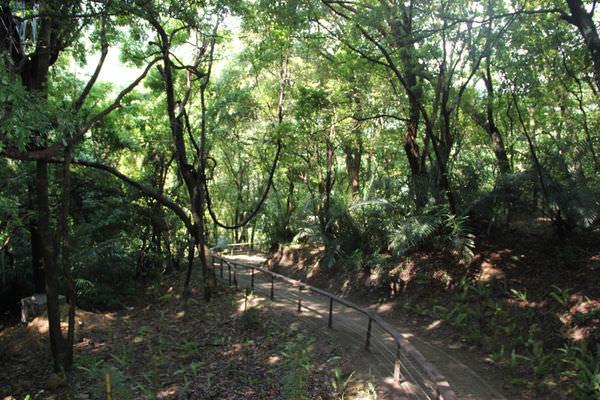 生態步道42.jpg