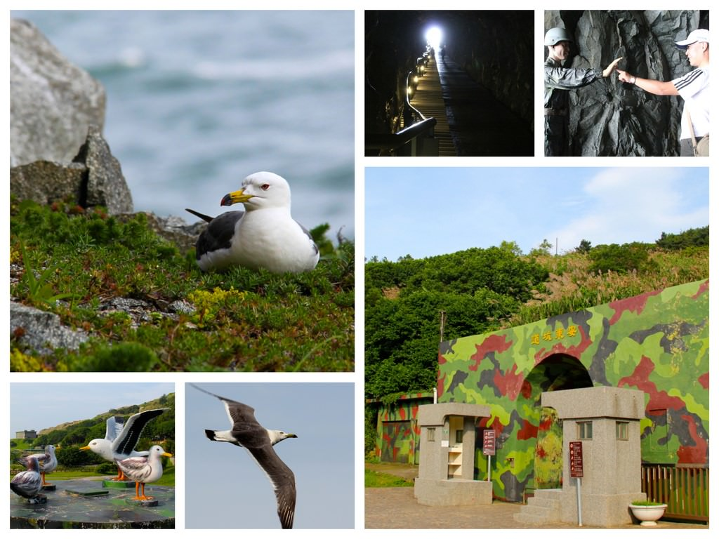IMG_6741_Fotor_Collage