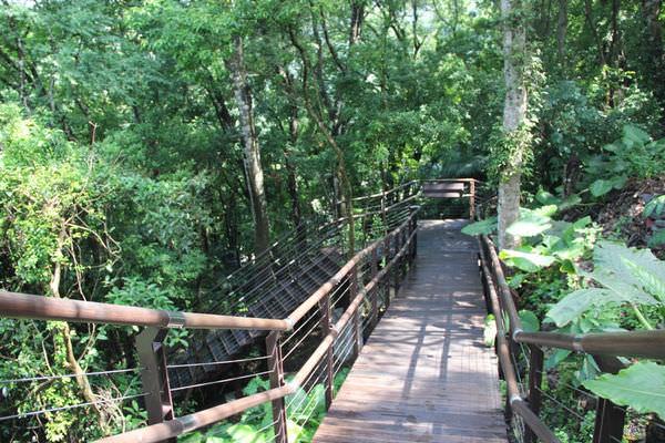 生態步道29.jpg